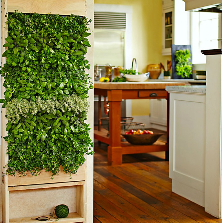 How to Grow a Vertical Herb Garden in the Kitchen