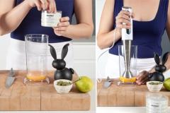 Essential small kitchen appliances